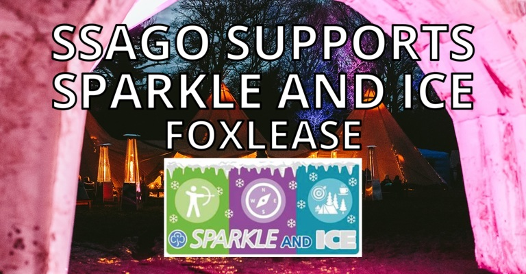Sparkle and Ice - Foxlease